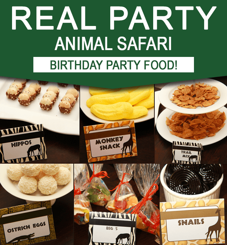 Safari Birthday Party Food Ideas - Real Party
