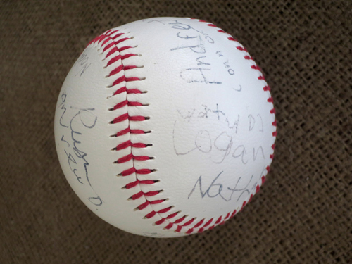 Baseball Theme Party Autograph Baseball